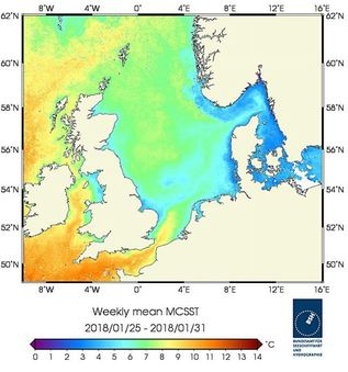 Weekly mean sea surface temperature