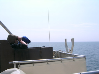 Bird counting with binoculars from on board a ship